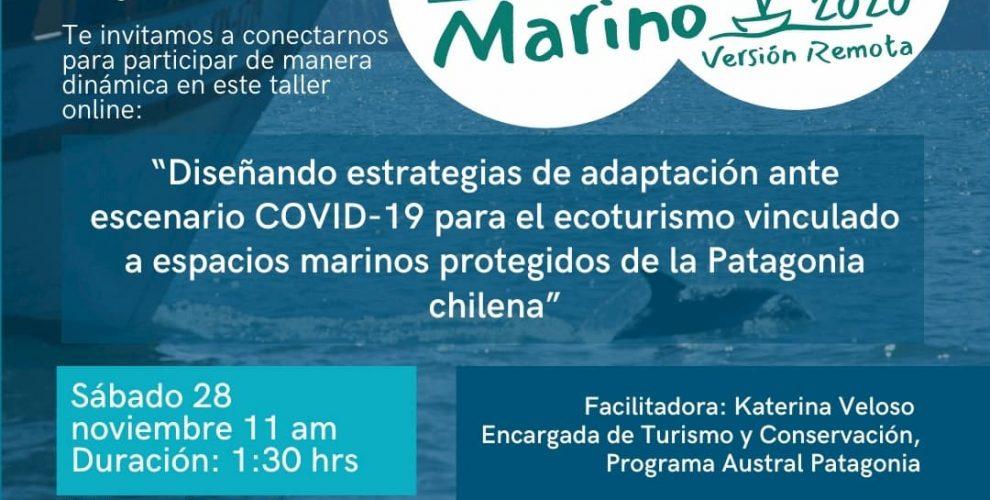 Ecoturismo Marino 2020